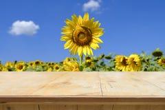 Dessus de table en bois sur le champ de tache floue des tournesols de floraison Photo libre de droits