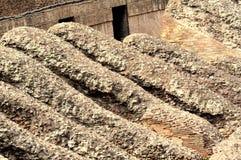 Dessus de toit à Rome Photos libres de droits