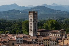 Dessus de toit rouges stupéfiants de Lucques chez la Toscane en Italie photos libres de droits