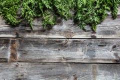 Dessus ou feuilles des carottes sur le papier peint en bois, l'espace de copie Images libres de droits