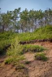 Terrain Stability - Landslide. A destabilized slope shows continuous sliding movement with green vegetation not being able to stabilize royalty free stock images