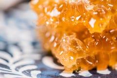 Destaques em Honey Comb imagem de stock royalty free
