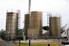 Destilaria do uísque Imagem de Stock