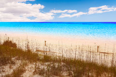 Destin beach in florida ar Henderson State Park. USA Royalty Free Stock Images