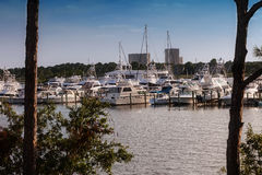 Destin Marina Stock Image