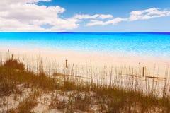 Destin strand i florida ar Henderson State Park Royaltyfria Bilder
