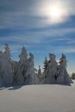 Destinación de la nieve landscape Fotografía de archivo libre de regalías