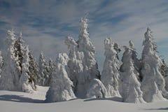 Destinación de la nieve landscape Foto de archivo