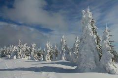 Destinación de la nieve landscape Imagen de archivo libre de regalías