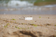 Destination Label at the Beach, Nautical Background Royalty Free Stock Images