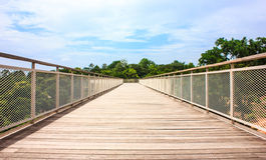 Destination. Long wooden bridge to the destination Stock Photography