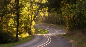 Destination Road. A curvy road descends through a rural woods stock image