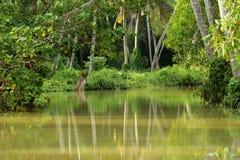 Destinations du sud de visite de vacances de l'Inde image libre de droits