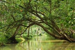 Destinations du sud de visite de vacances de l'Inde images stock