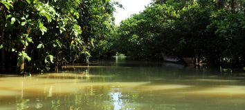 Destinations naturelles du sud de visite de l'Inde images stock