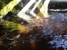 Destinerat vatten för is som är dolt med en behållare av modeller Royaltyfria Bilder