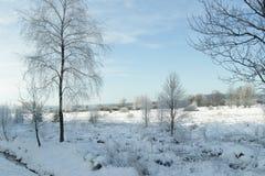 Destino da neve landscape Imagem de Stock