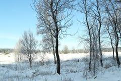 Destino da neve landscape Fotografia de Stock Royalty Free