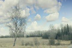 Destino da neve landscape imagens de stock royalty free