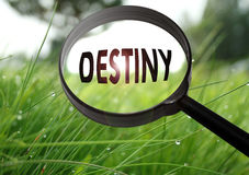 Destiny. Magnifying glass with the word destiny on grass background. Selective focus royalty free stock photo
