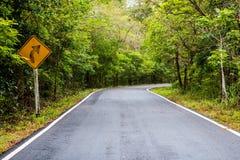 Destra di giro del segnale sulla strada campestre, segnali stradali Immagini Stock Libere da Diritti