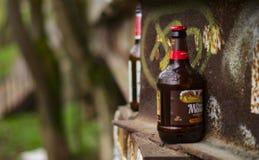 Destra sinistra delle bottiglie di birra dei teppisti sulla via immagini stock libere da diritti