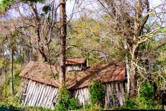 Destroyed övergav trästrukturen djupt inom en skog arkivbilder