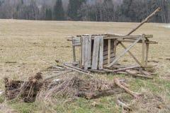 Destroyed aumentó la piel en un prado en el invierno Foto de archivo libre de regalías