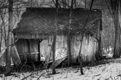 Destroyed cottage in the woods stock photography