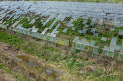 Destroyed greenhouses Stock Image