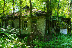 Destroyed houses in which people lived in a dead radioactive zone. Royalty Free Stock Photos