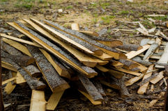 Destroyed pieces of wood in a mill. The trashed wood in a wood-working mill Royalty Free Stock Photography
