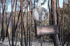 Destroyed Signs on a Burnt Forest Stock Photos