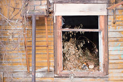 Destroyed window in a wooden house Royalty Free Stock Photography