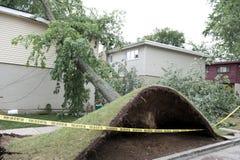 Destruction de vent photo libre de droits