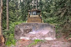 Bulldozer clears site for construction in forest Stock Photography