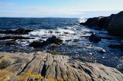 Destructive sea. Destructive symbols of Baltic sea in southern Sweden Royalty Free Stock Photos