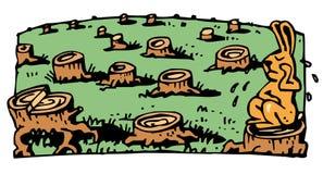 Destruição da floresta Imagem de Stock Royalty Free
