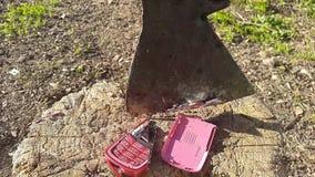 Destruya el teléfono móvil viejo con un hacha metrajes