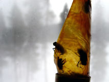 Desvío de la mosca Foto de archivo libre de regalías
