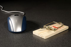 Desvío del ratón Imagenes de archivo