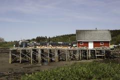 Desvíos de la langosta en el muelle Imagen de archivo libre de regalías