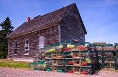 Desvíos de la langosta, Nuevo Brunswick foto de archivo libre de regalías