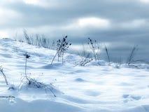 Desviaciones de la nieve Imagen de archivo libre de regalías