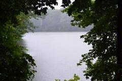 deszcz Zdjęcie Stock