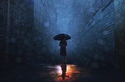 Deszcz i połysk zdjęcia royalty free