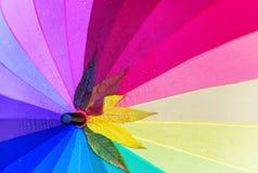 Deszcz, jesienny parasol Deszcz opuszcza i jesienni liście są na kolorowym parasolu Obraz Royalty Free