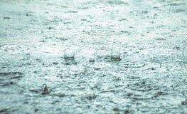 deszcz jest Obrazy Royalty Free