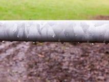 deszcz kropel wodny obwieszenie na metal bramy zakończeniu up obrazy royalty free