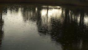 Deszcz krople na jezioro powierzchni dolewania deszczu letnim dniu zbiory wideo